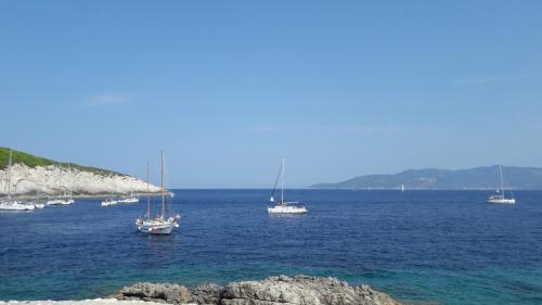 Experience Dalmatia Sights (3)