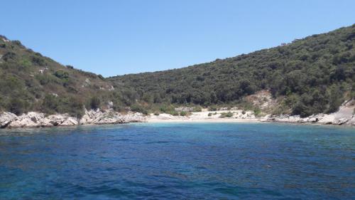 Experience Dalmatia Sights (5)